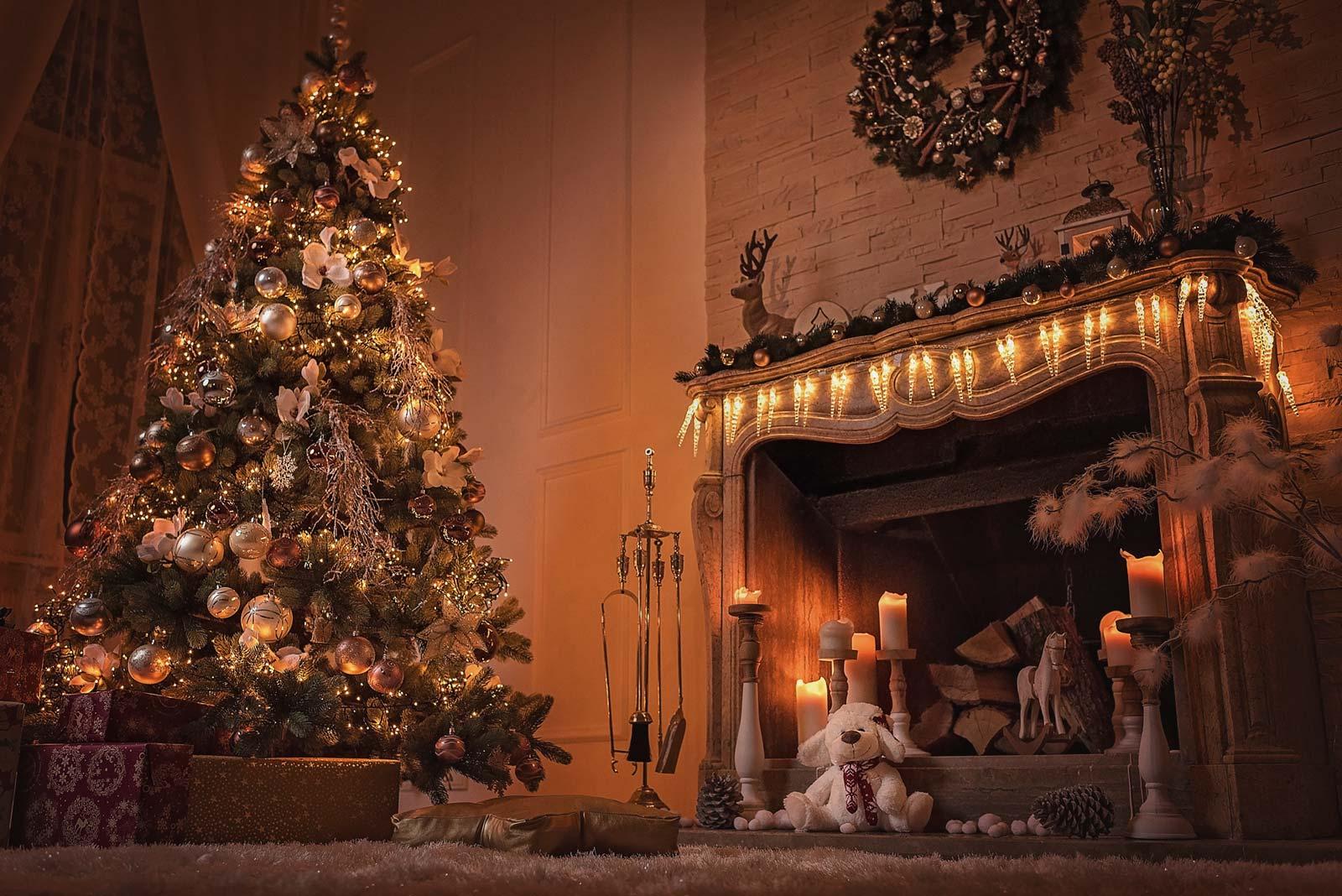 Whitewood Weihnachtsshooting Wien