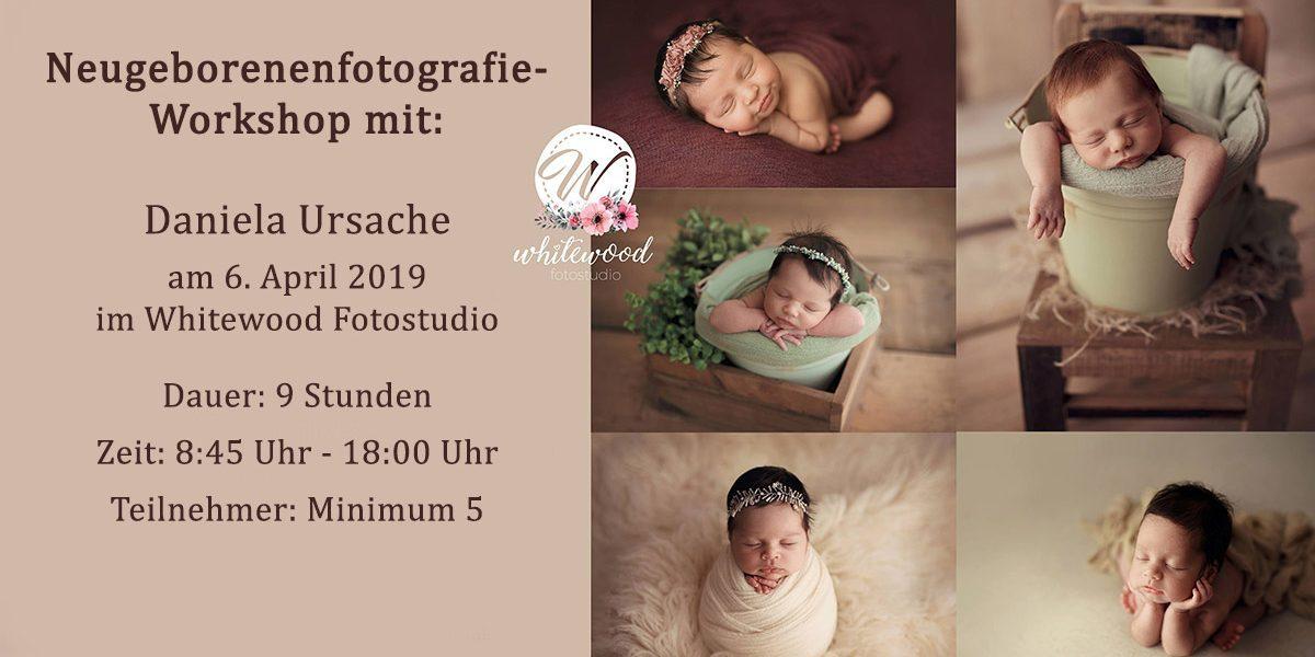 Workshop Neugeborene