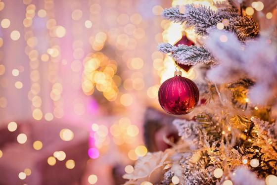 Weihnachtsshooting Wien Whitewood Fotostudio
